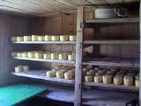 Planina v Lazu, cheese-making