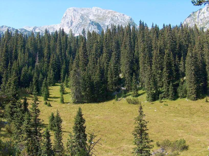 Going down from Planina v Lazy to Planina pri Jezeru