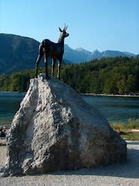 The  Zlatorog  on Bohinj lake