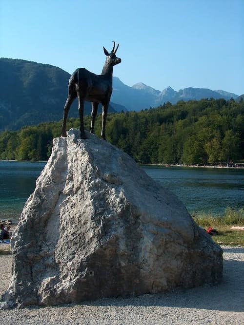 "The ""Zlatorog"" on Bohinj lake"