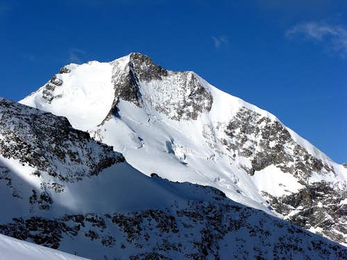Piz Bernina 4049m and Bianco ridge