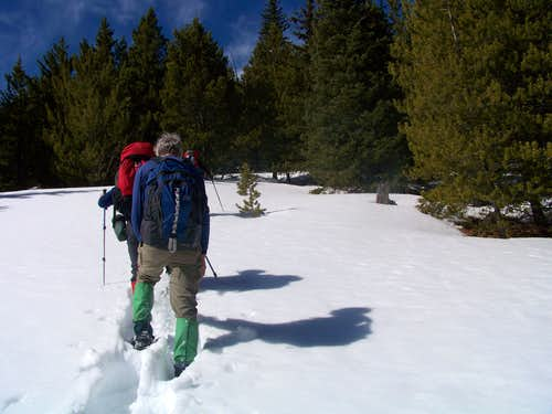 Snowshoeing along the northeast slope