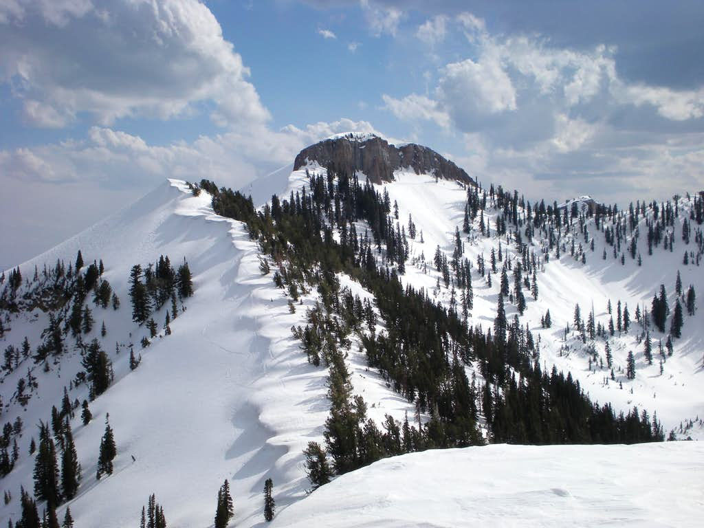 Mt Elmer
