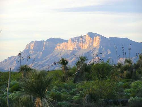 Guadalupe Range from the...