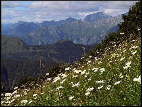 Summer below Gnjilica