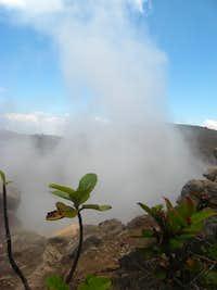 Steam from Izalco summit