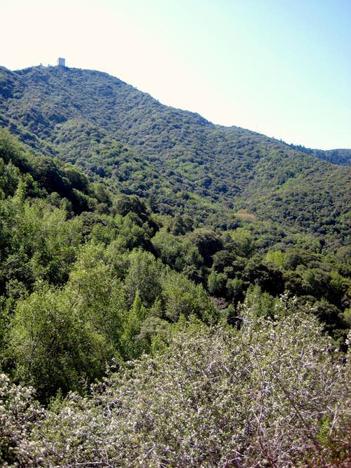 North Face of Umunhum