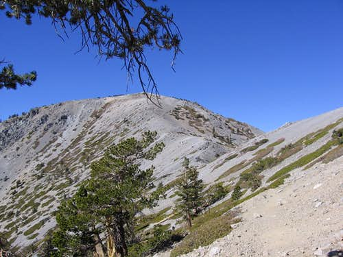 Returns to Mt. Baldy--Goats, Groans, and Helping Each Other Out