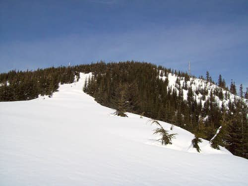 The summit of Blowdown Mountain