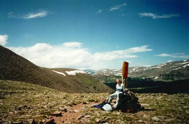 Fox-Quent Pass is NE of Mount...