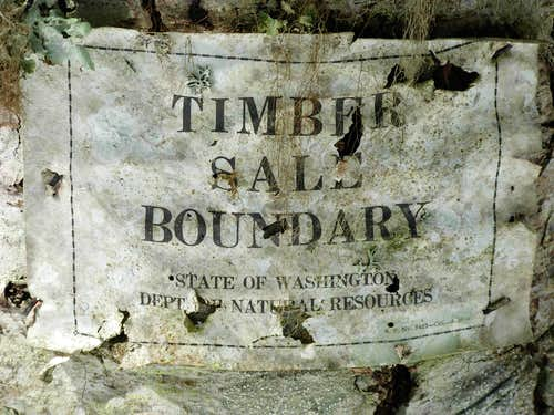 Timber Sale Boundary