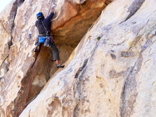 The Importance of Being Ernest, 5.10D R