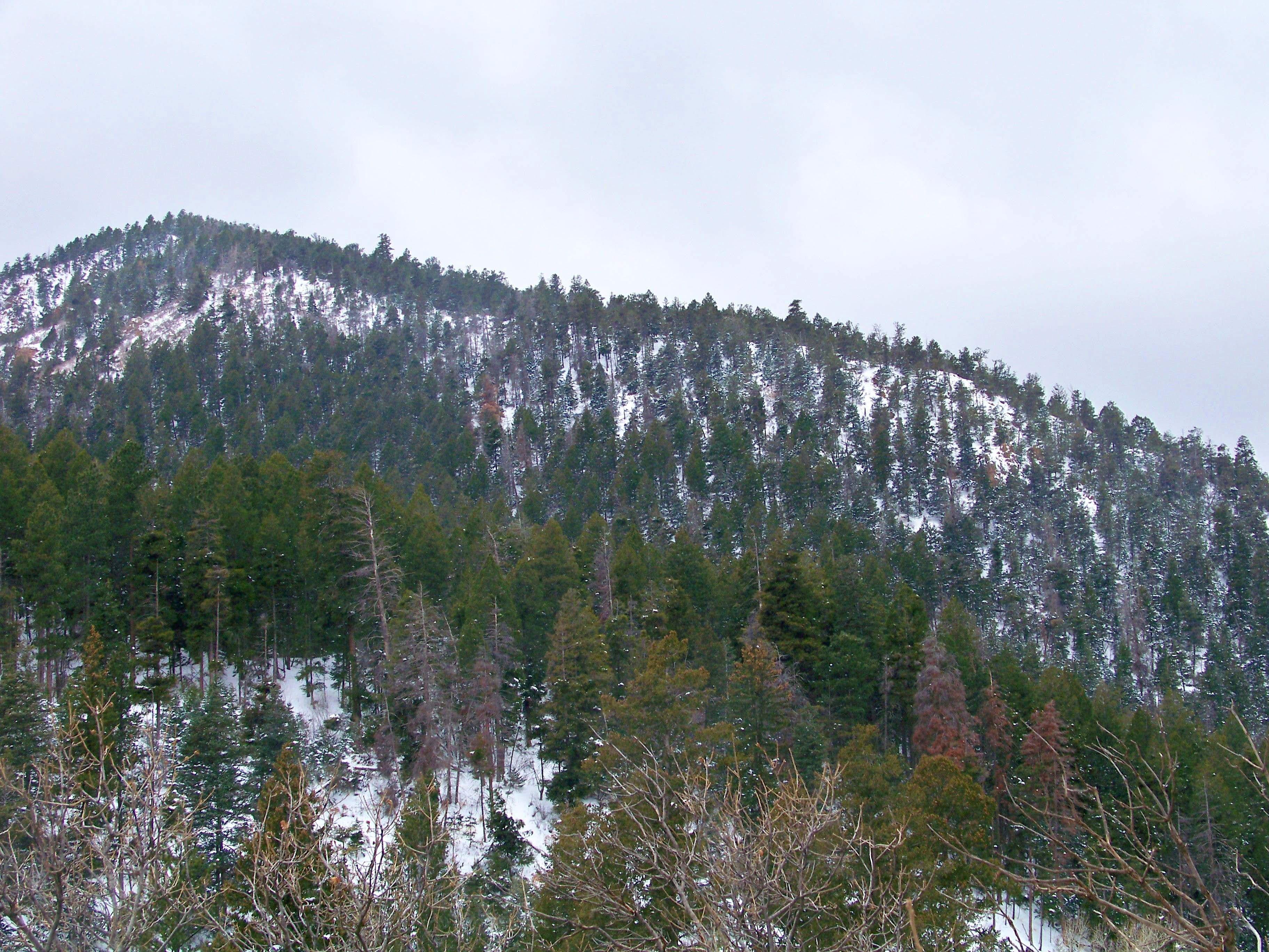 Chautauqua Mountain