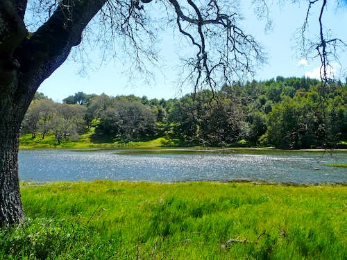 Pond on Burdell Mtn.