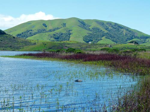 Black Mtn. from Nicasio Reservoir