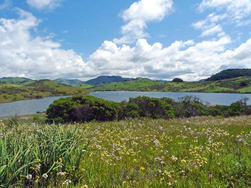 South over Nicasio Reservoir