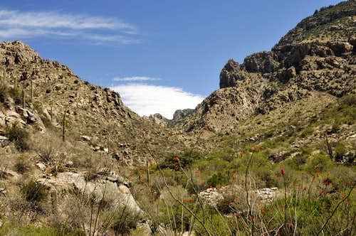 Inside Pima Canyon