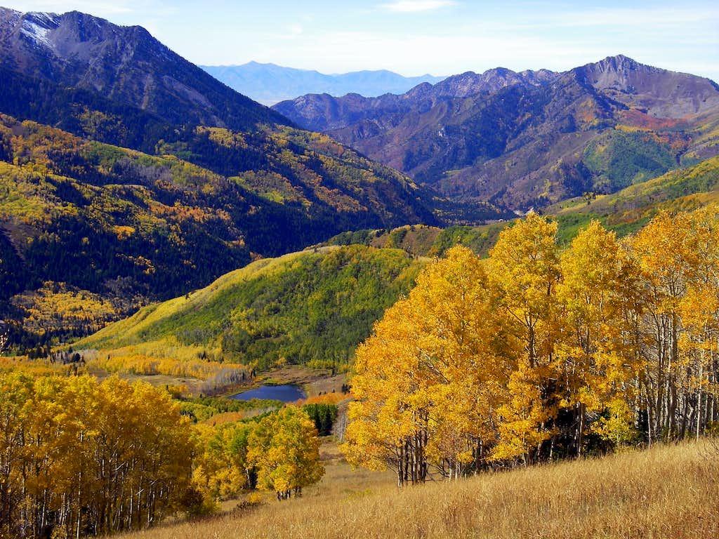 2008 Utah fall colors