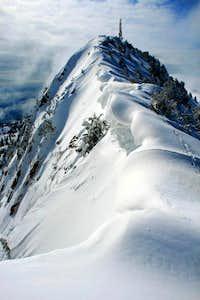 Mt. Ogden, from Allen Peak ridge.