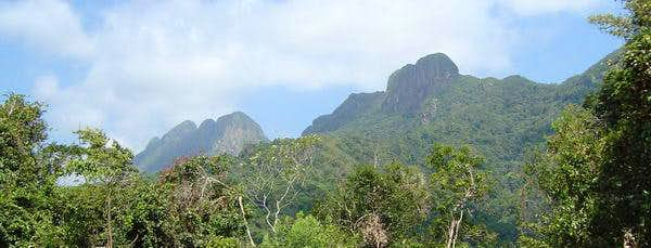 Maya Mountains - Belize