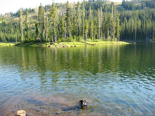 Fish Lake, Wallowas