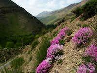 Heraz valley, northern Iran