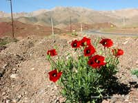 Near Abyaneh, Iran