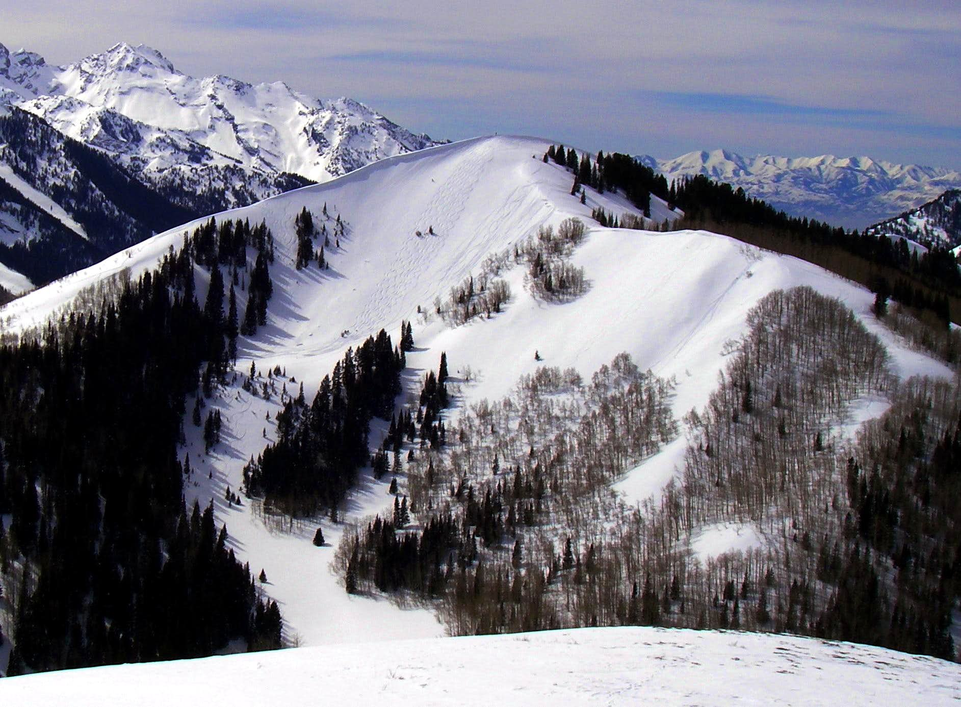 Reynolds Peak Skiing