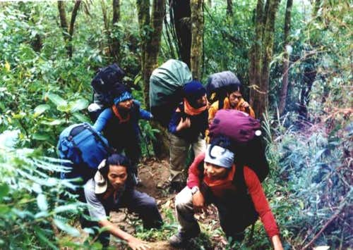 route of Agung's rain forest