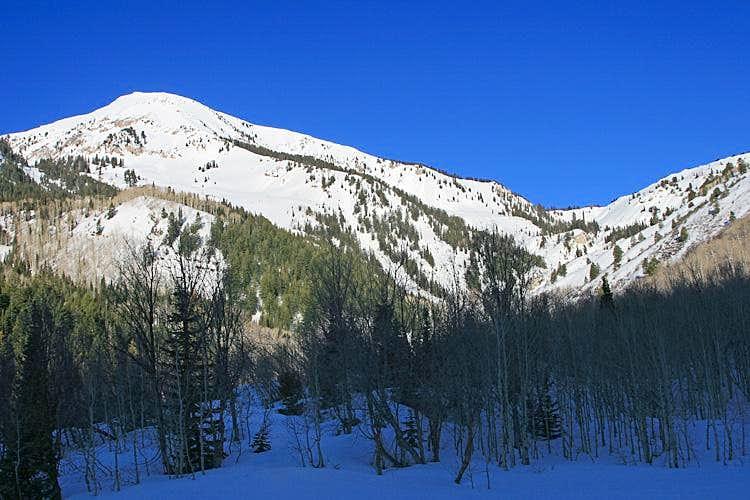 Deer Creek, Box Elder Peak, Utah