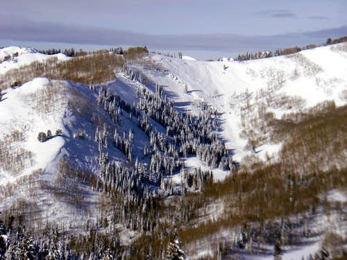 Avalanche on North Willow area