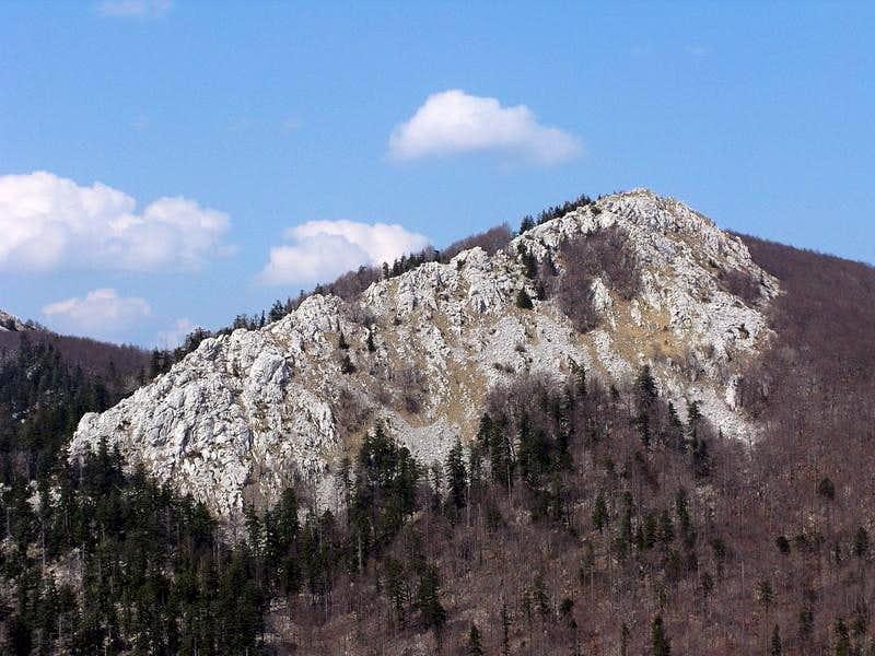 Crni Vrh summit