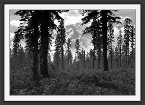 Apparitional Mt Shasta and...
