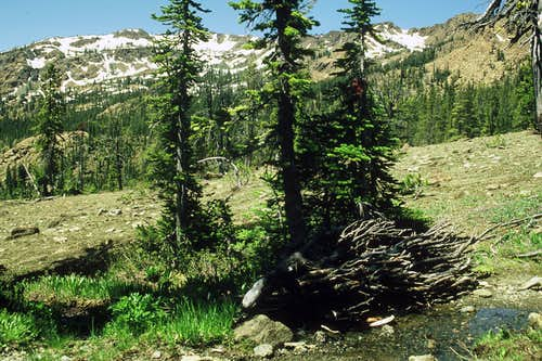 Upper trail creek crossing