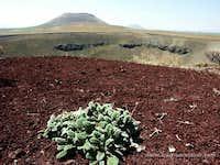 Meketuzla crater, Turkey