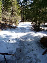 Snowy Trail #9
