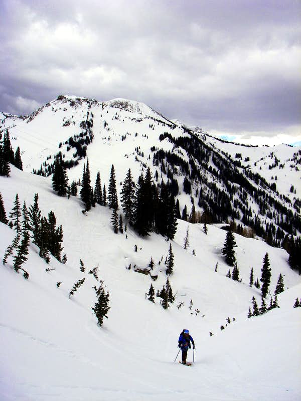 Skinning up Grizzly Gulch