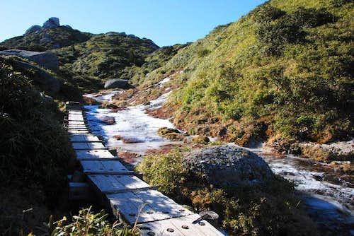 Trail along frozen streams