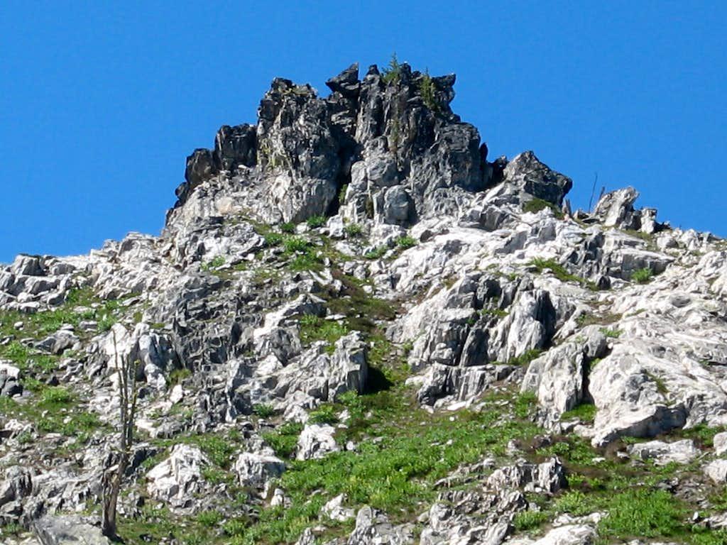 Dark Protrusions Along the Ridge