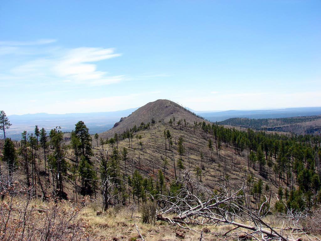 Cerro Picacho