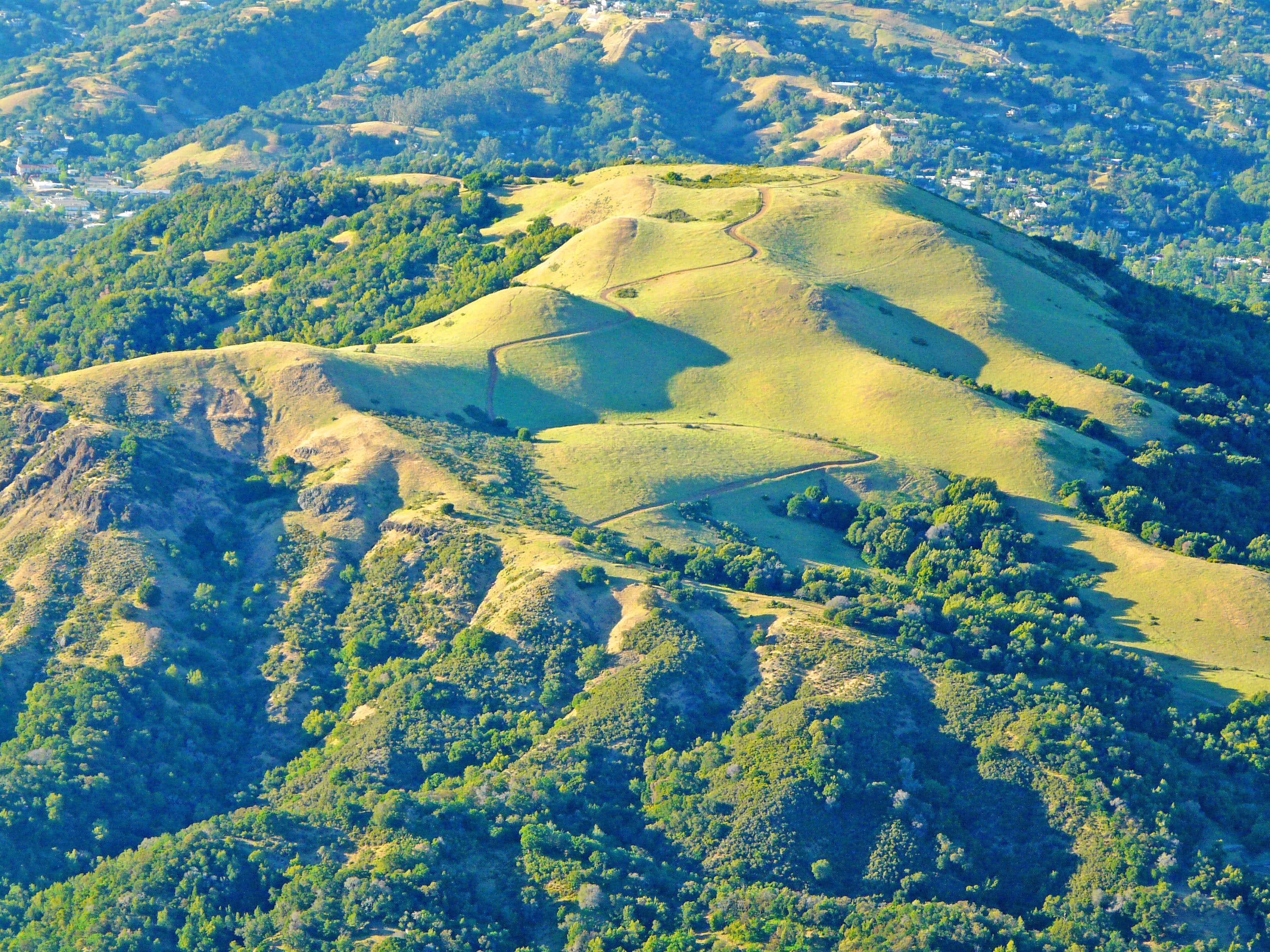 Bald Hill (Marin County)