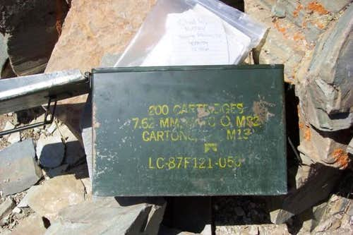 Wildrose Peak summit log