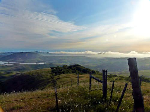 Coastal fog beyond Nicasio Reservoir from Hicks Mtn.