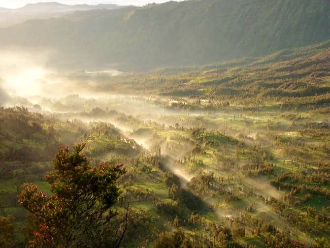 morning views at Bromo.....