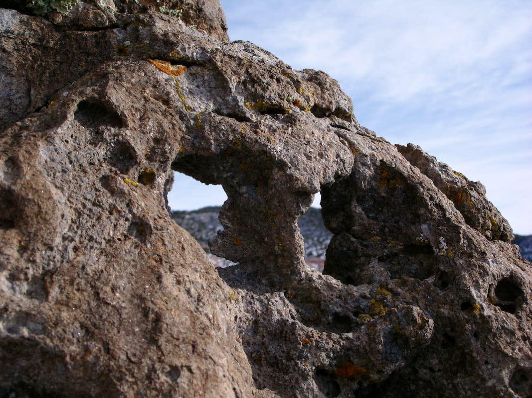 Objects Found In Rocks