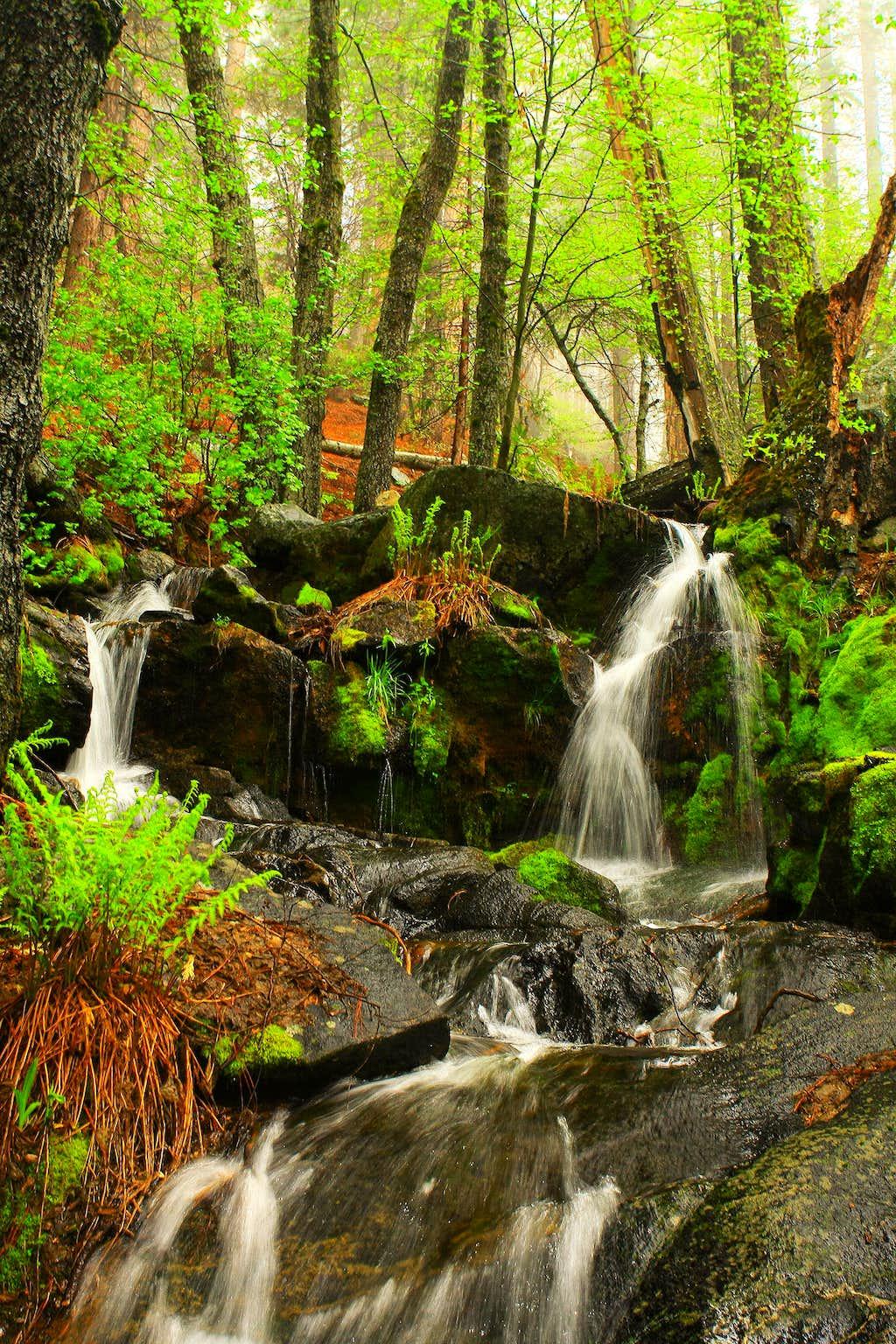 Tuolumne South Fork Falls