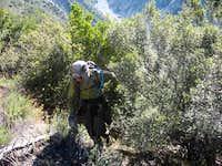 Bighorn Ridge 1