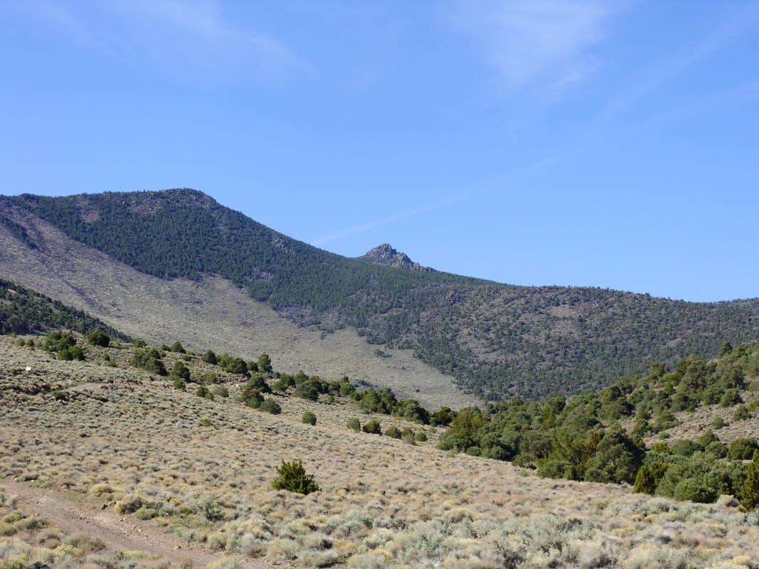 The summit from the trailhead