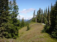 Looking north along Kachess Ridge