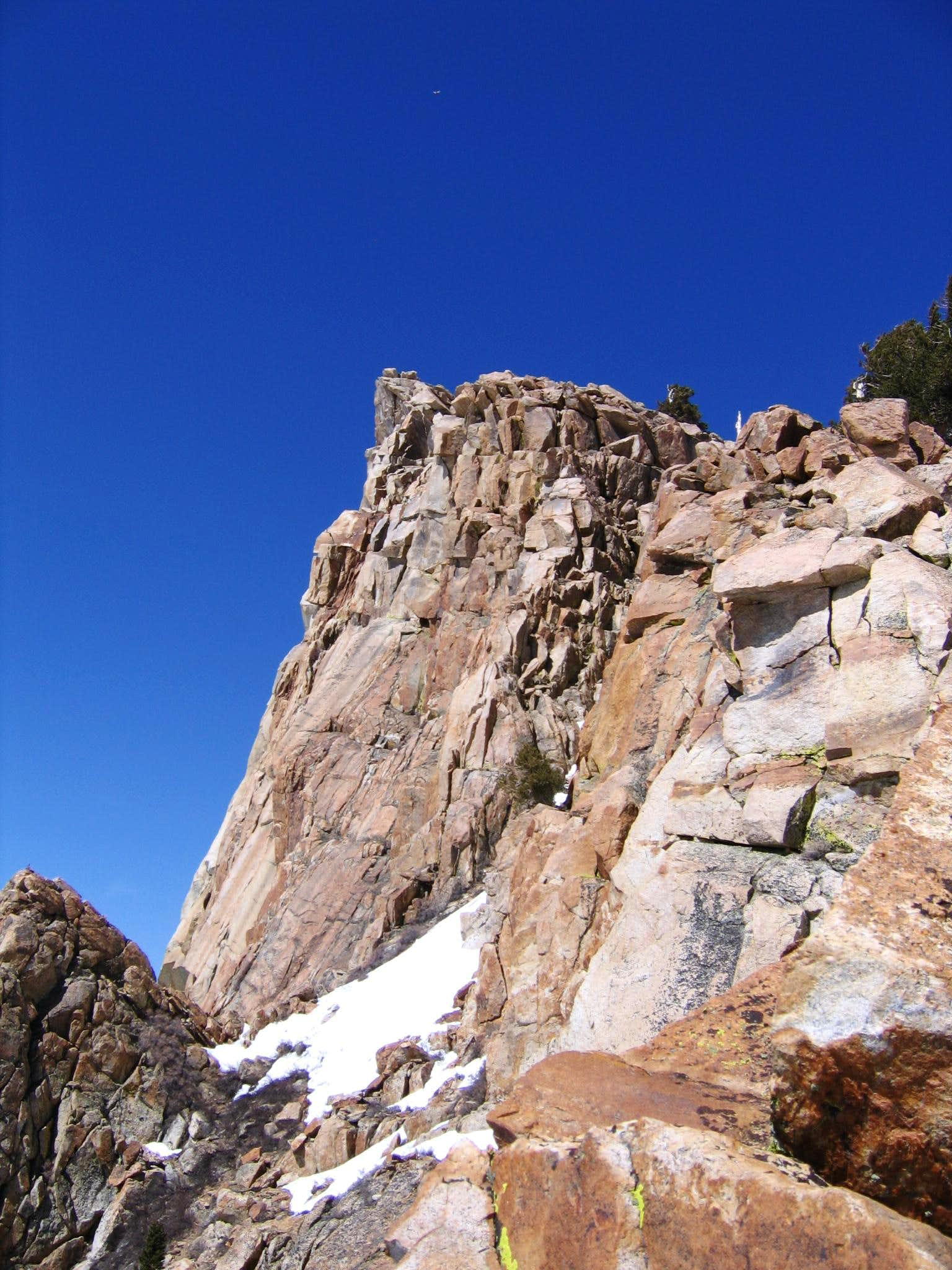 Mt Silliman May 2009